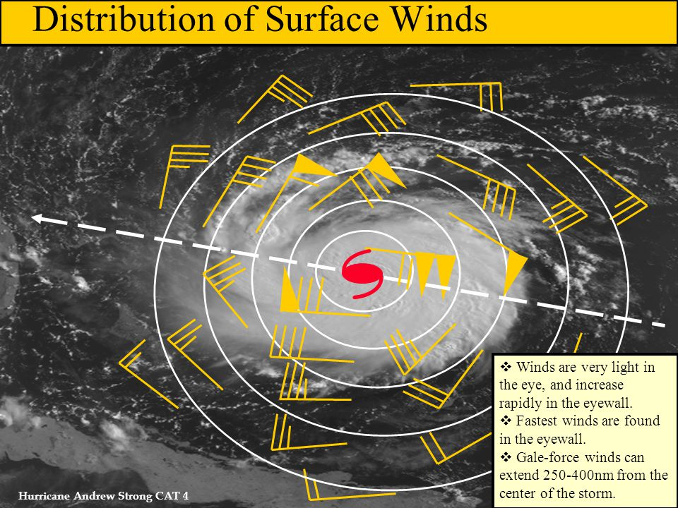 Distribution of Surface Winds