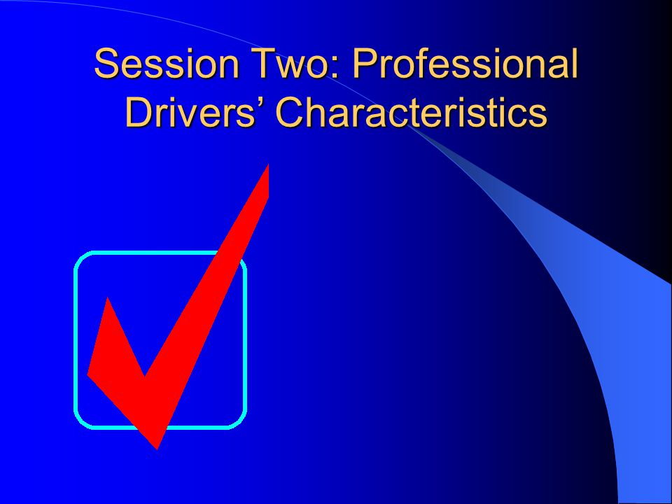 Session Two: Professional Drivers' Characteristics
