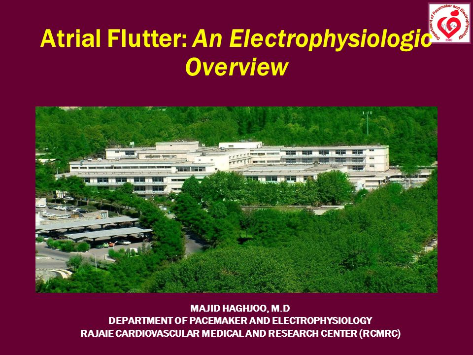 Atrial Flutter: An Electrophysiologic Overview