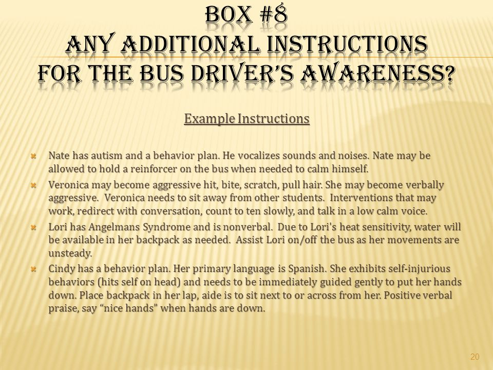 Box #8 Any additional instructions for the bus driver's awareness