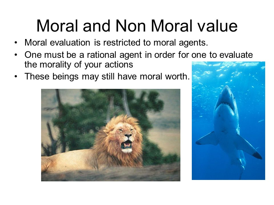 Moral and Non Moral value