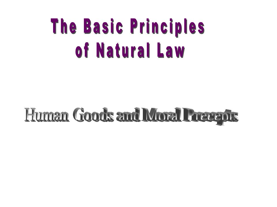 Human Goods and Moral Precepts