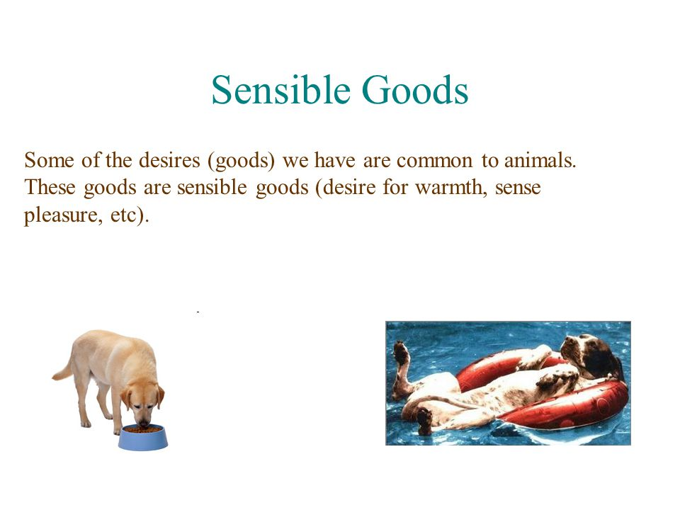 Sensible Goods Some of the desires (goods) we have are common to animals.