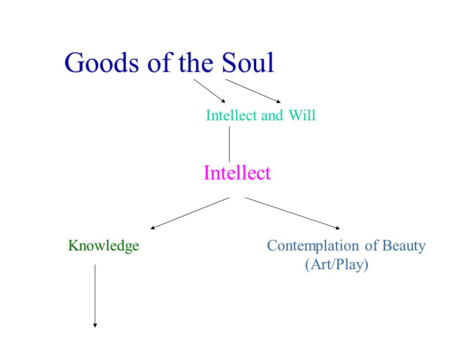 Goods of the Soul Intellect Intellect and Will