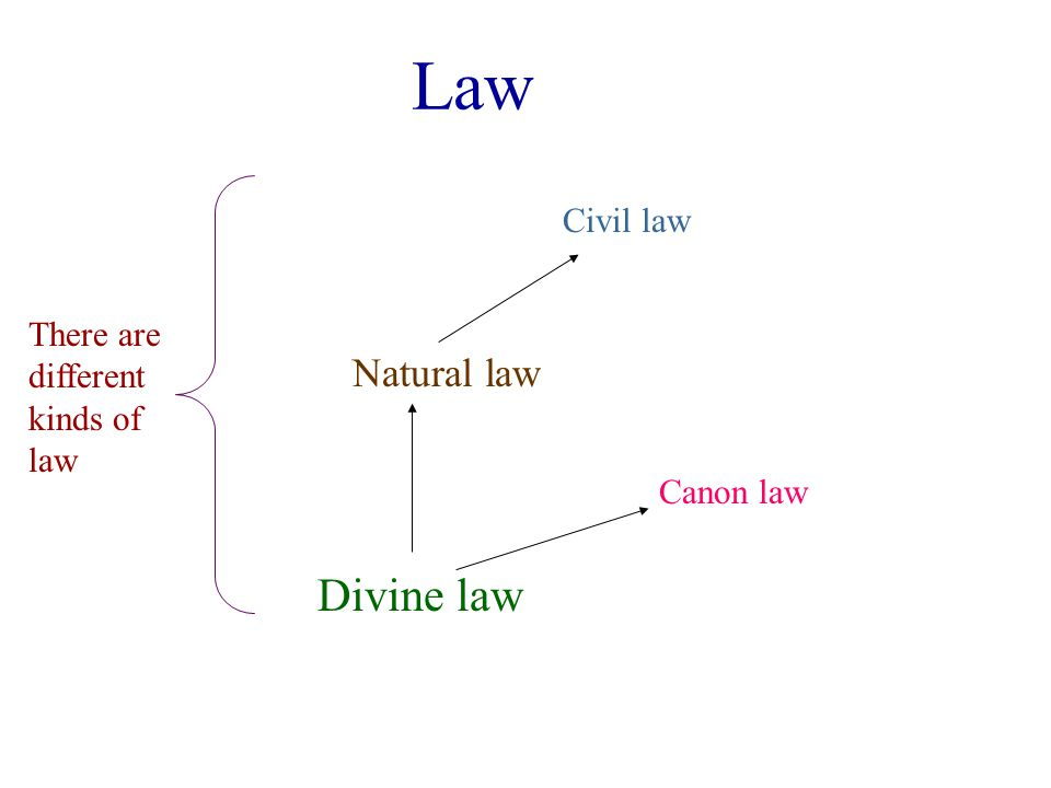 Law Divine law Natural law Civil law There are different kinds of law