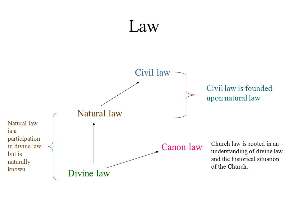 Law Civil law Natural law Canon law Divine law