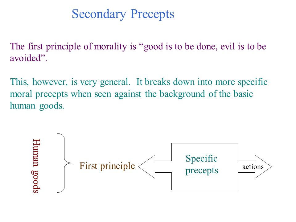 Secondary Precepts The first principle of morality is good is to be done, evil is to be avoided .