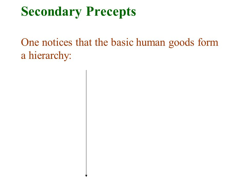 Secondary Precepts One notices that the basic human goods form a hierarchy: