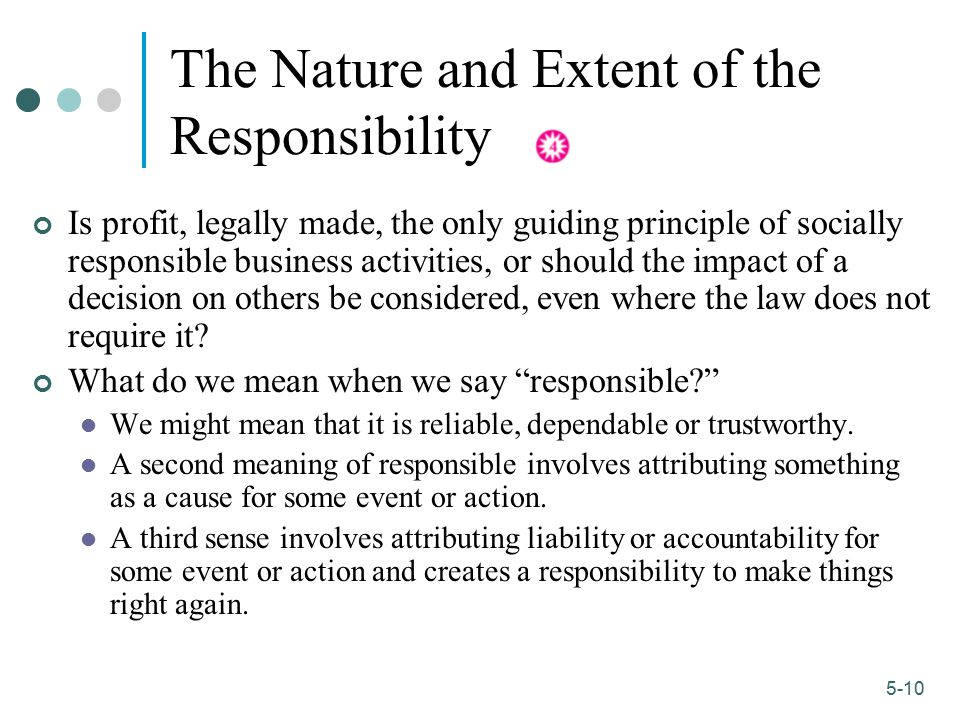 The Nature and Extent of the Responsibility