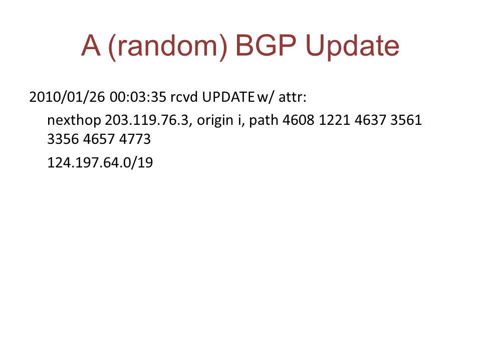 A (random) BGP Update