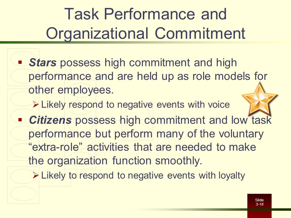 Task Performance and Organizational Commitment