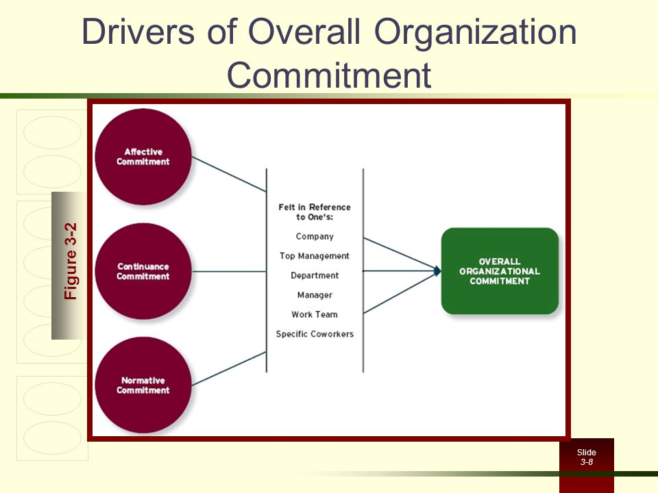 Drivers of Overall Organization Commitment