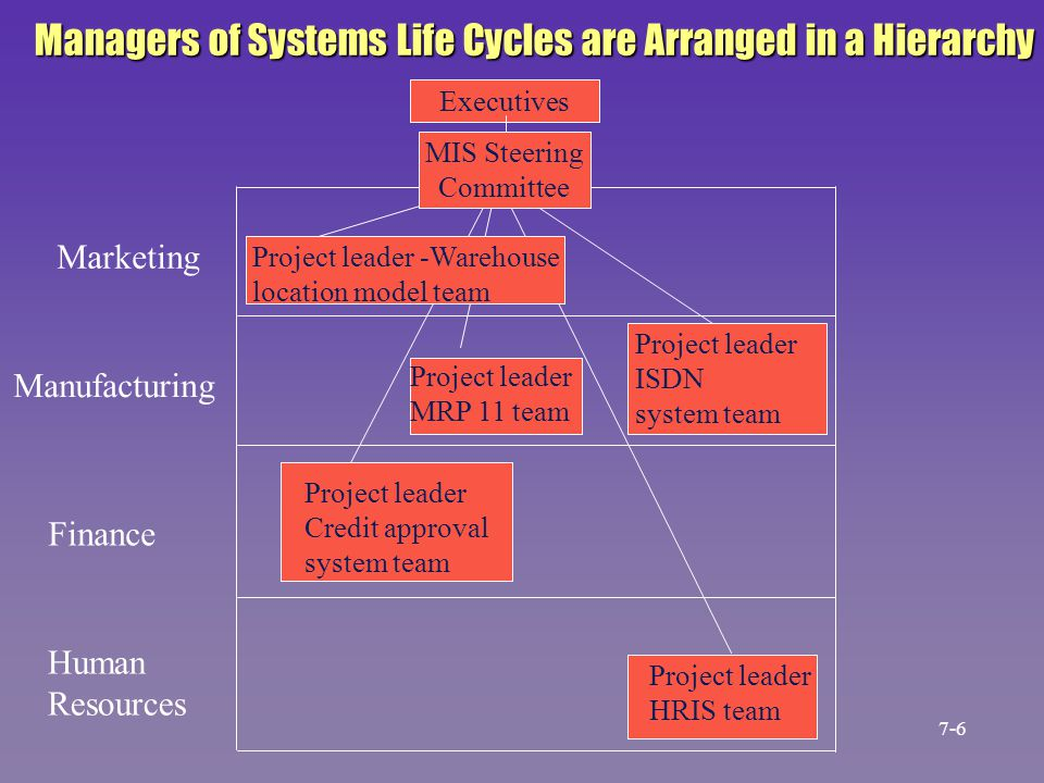 Managers of Systems Life Cycles are Arranged in a Hierarchy