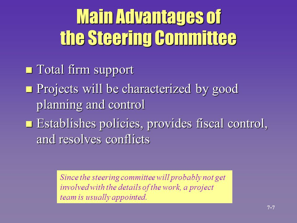 Main Advantages of the Steering Committee