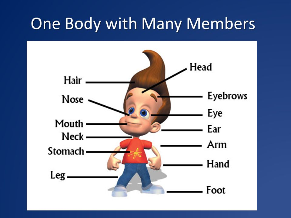One Body with Many Members