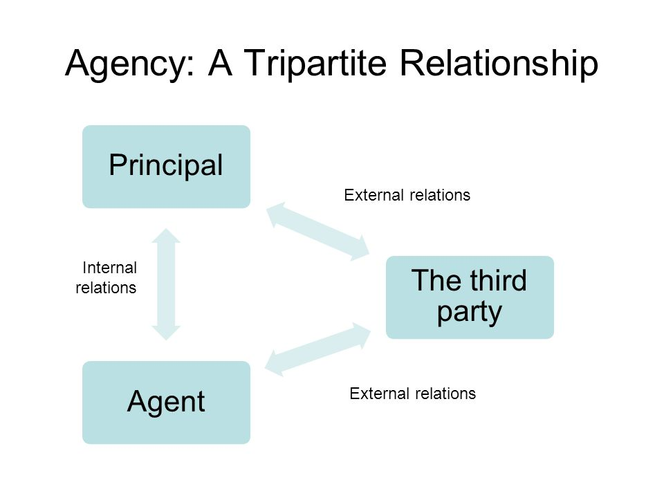 Agency: A Tripartite Relationship