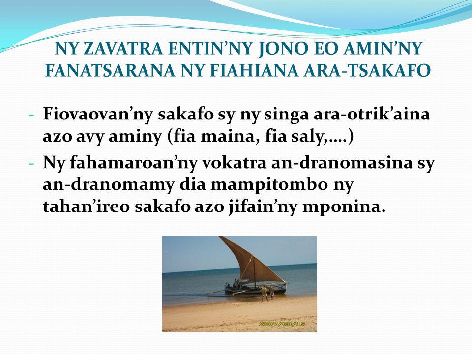 NY ZAVATRA ENTIN'NY JONO EO AMIN'NY FANATSARANA NY FIAHIANA ARA-TSAKAFO