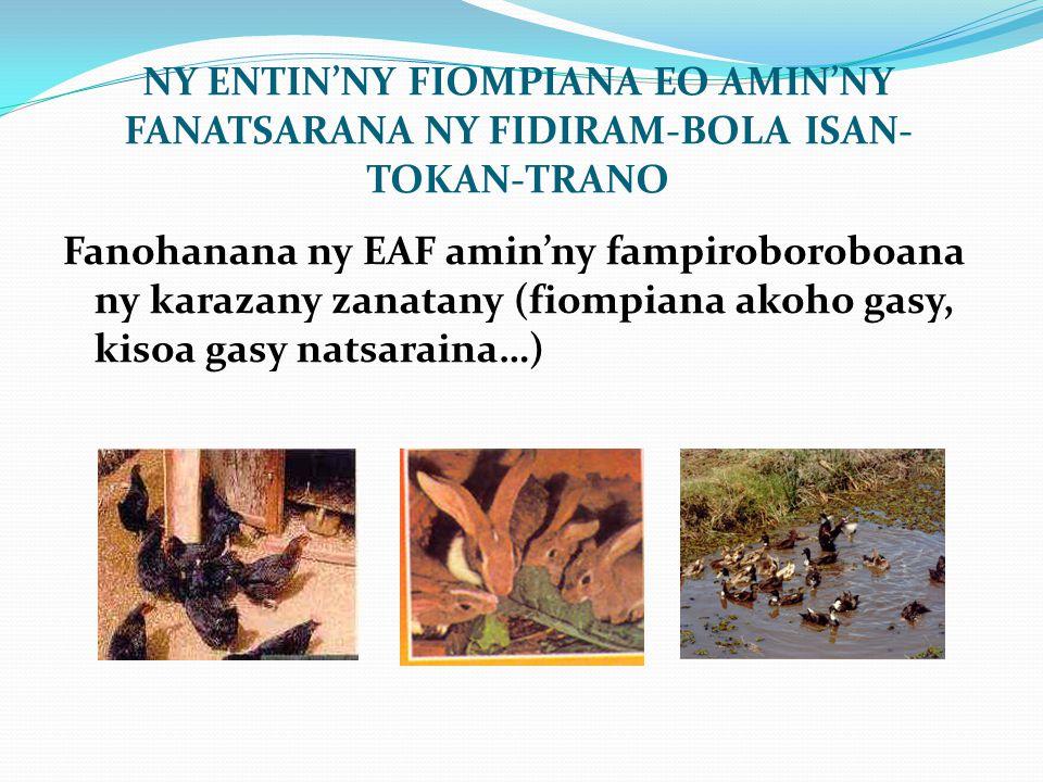 NY ENTIN'NY FIOMPIANA EO AMIN'NY FANATSARANA NY FIDIRAM-BOLA ISAN-TOKAN-TRANO