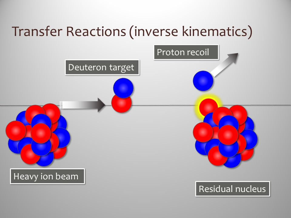 Transfer Reactions (inverse kinematics)