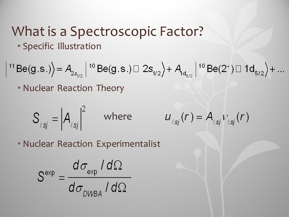 What is a Spectroscopic Factor