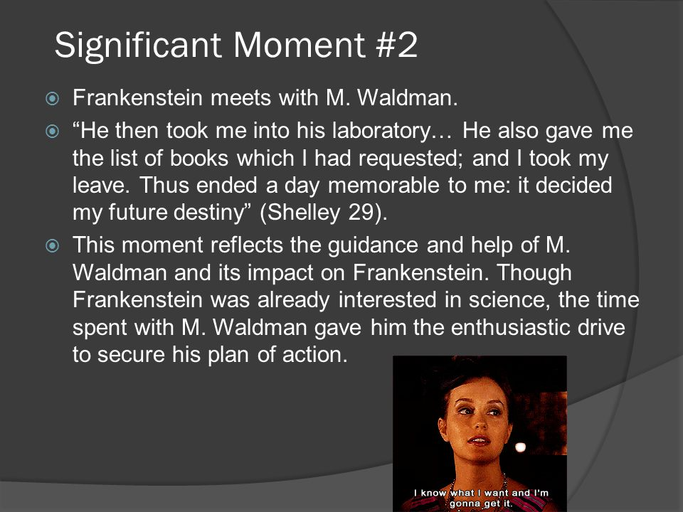 Significant Moment #2 Frankenstein meets with M. Waldman.