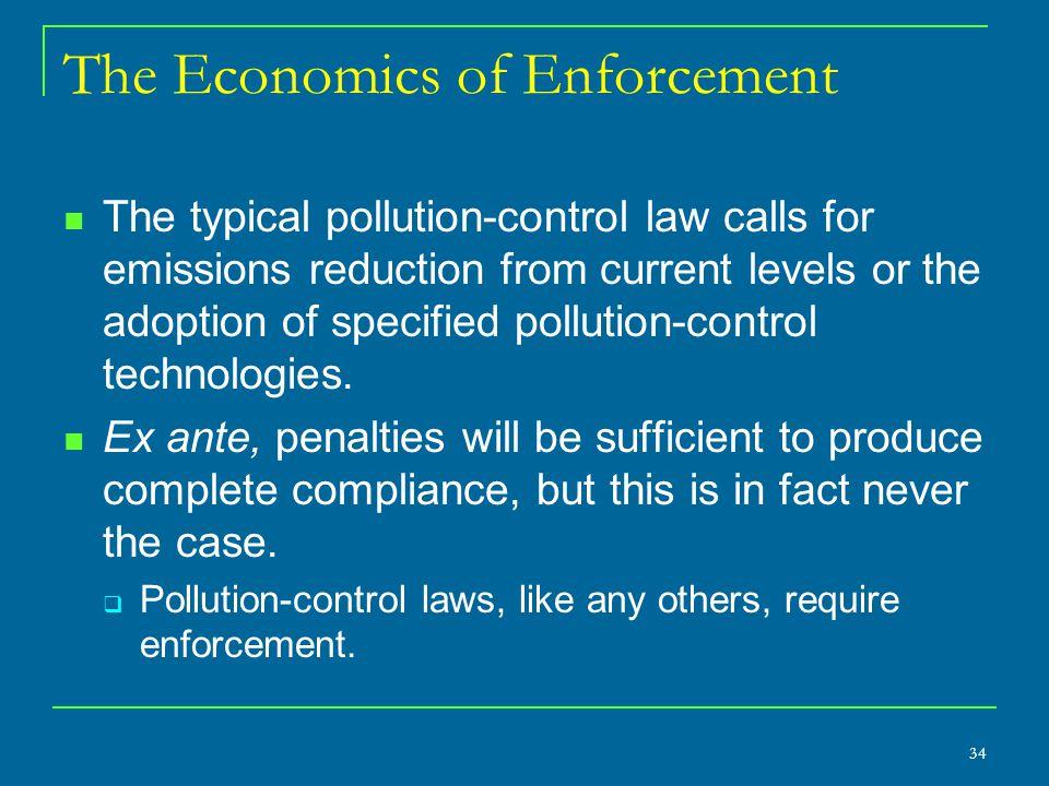 The Economics of Enforcement