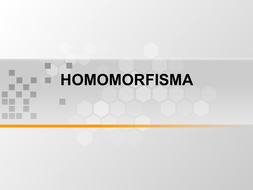 HOMOMORFISMA