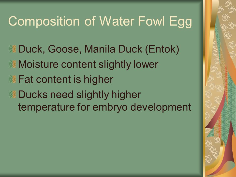 Composition of Water Fowl Egg