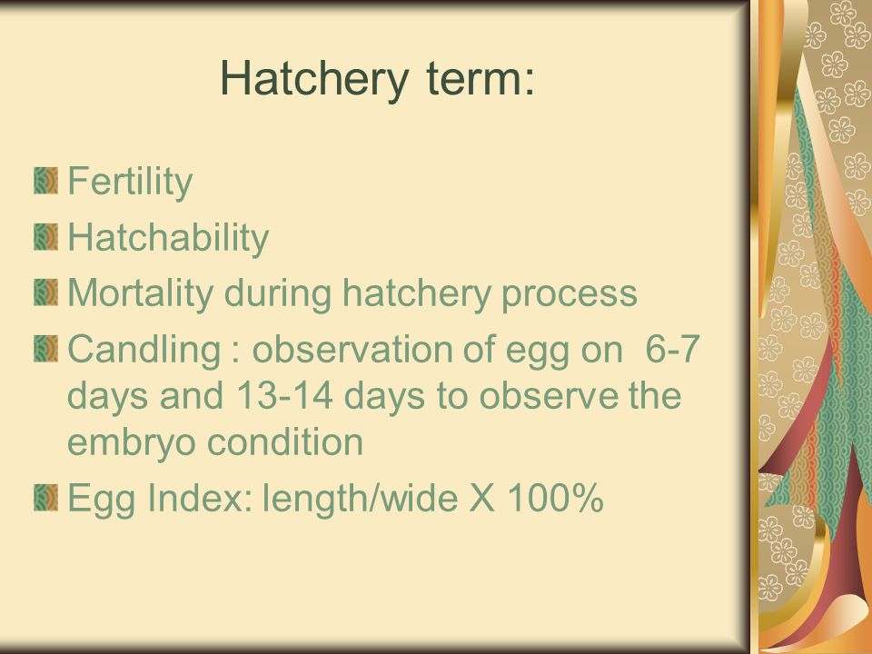 Hatchery term: Fertility Hatchability