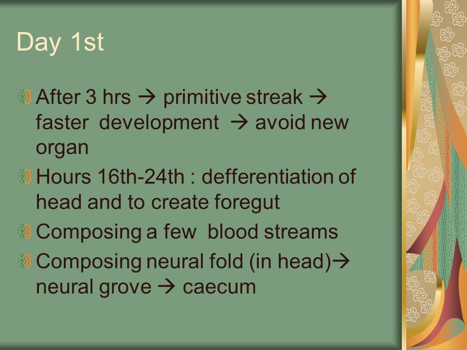 Day 1st After 3 hrs  primitive streak  faster development  avoid new organ. Hours 16th-24th : defferentiation of head and to create foregut.