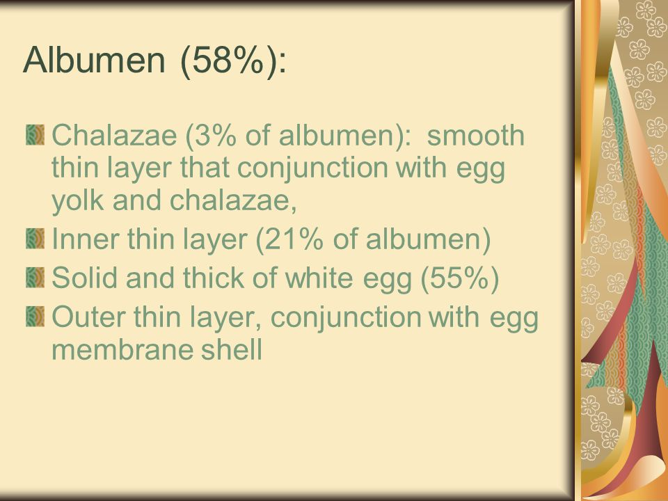 Albumen (58%): Chalazae (3% of albumen): smooth thin layer that conjunction with egg yolk and chalazae,