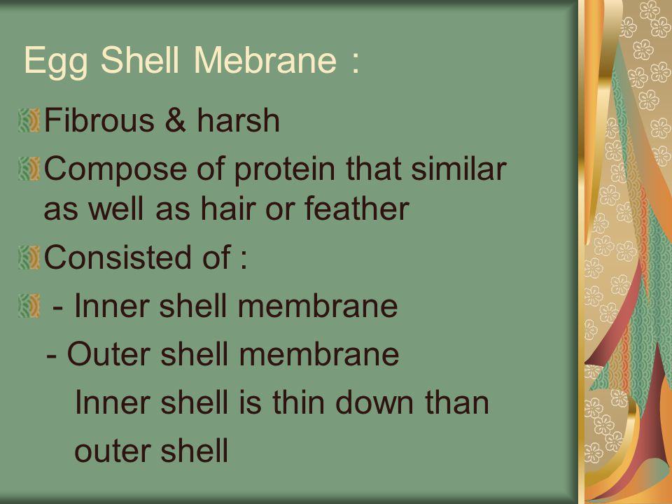 Egg Shell Mebrane : Fibrous & harsh