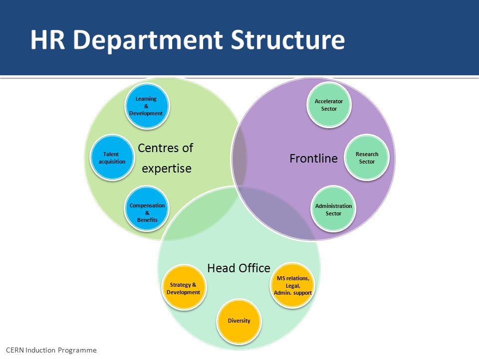 HR Department Structure