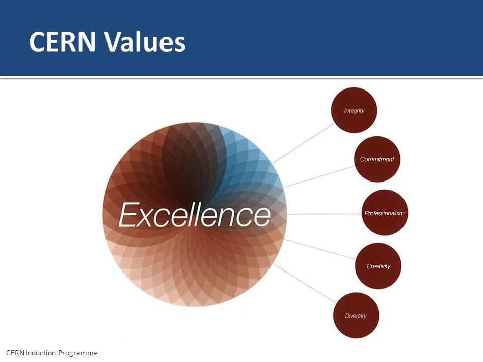CERN Values We just talked about transparency. Our Organisation has also explicit values which drive the meta value of excellence.
