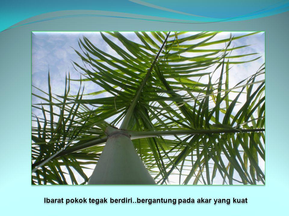 … Ibarat pokok tegak berdiri..bergantung pada akar yang kuat