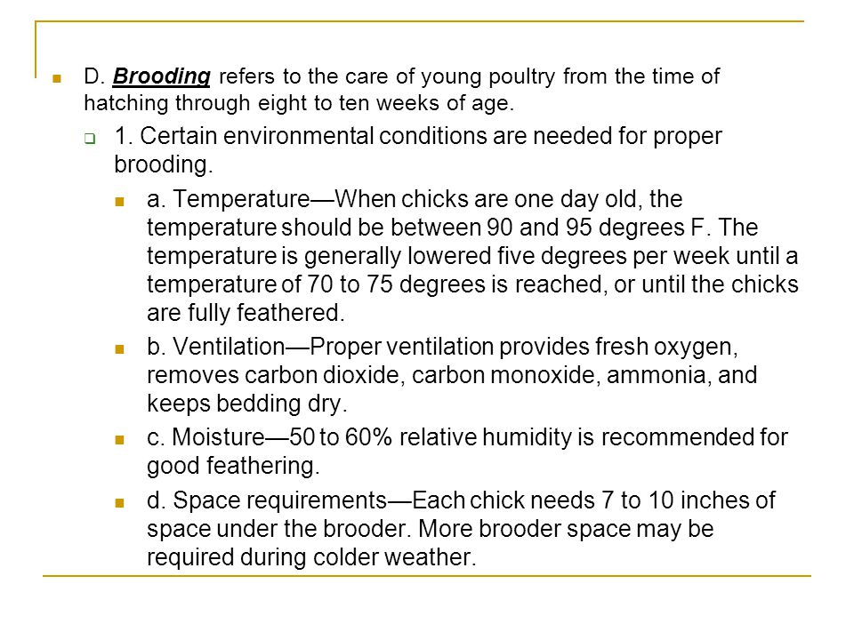1. Certain environmental conditions are needed for proper brooding.