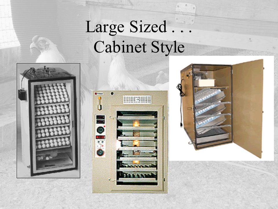 Large Sized . . . Cabinet Style