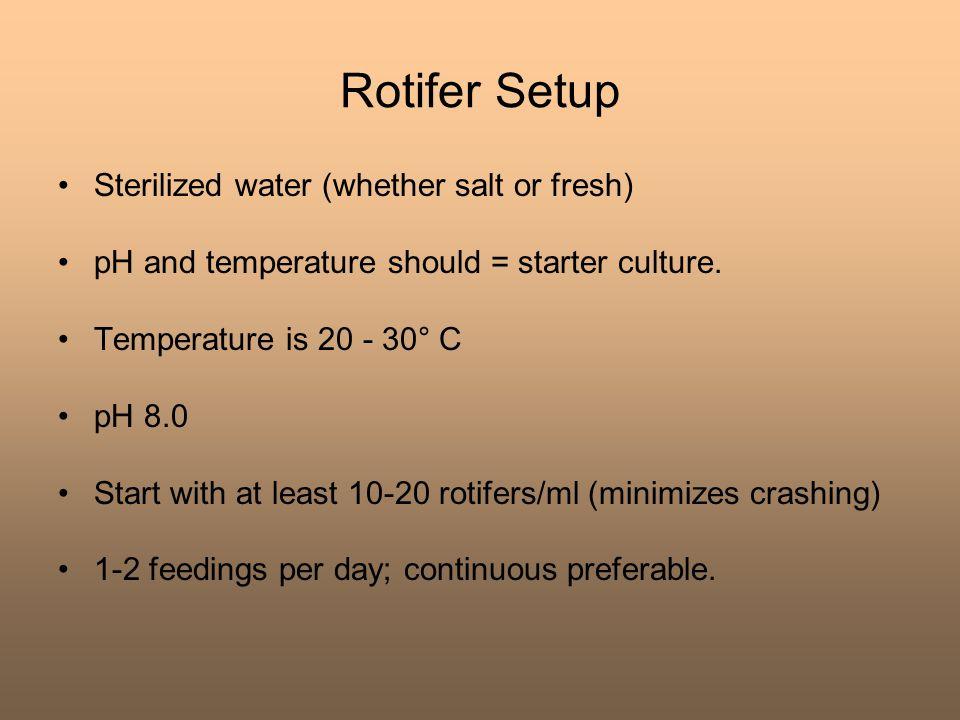 Rotifer Setup Sterilized water (whether salt or fresh)