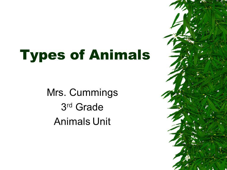 Mrs. Cummings 3rd Grade Animals Unit