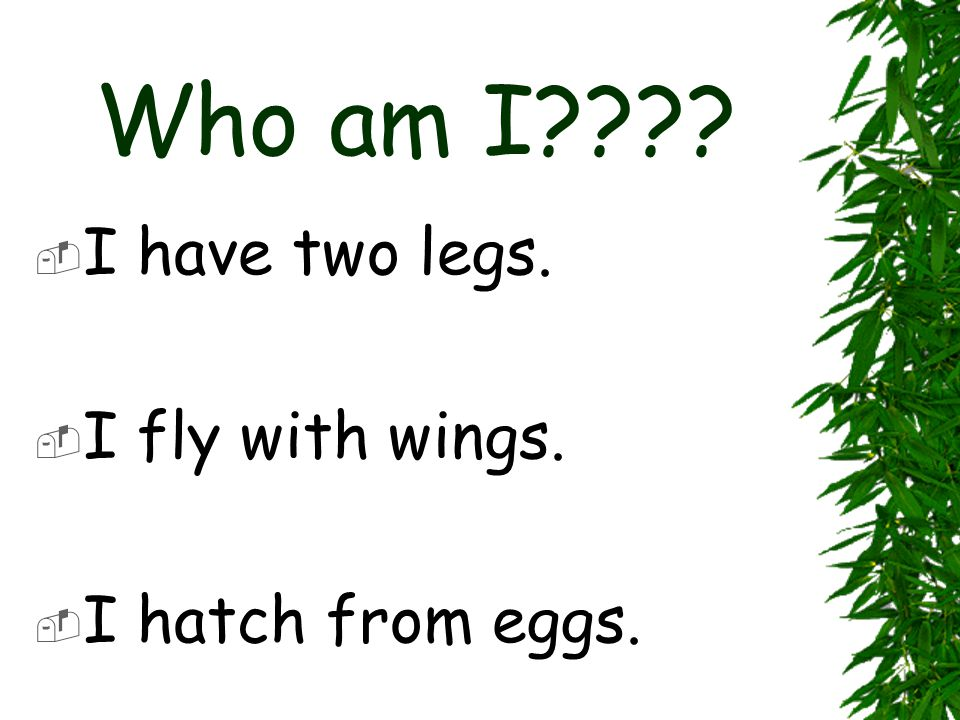 Who am I I have two legs. I fly with wings. I hatch from eggs.