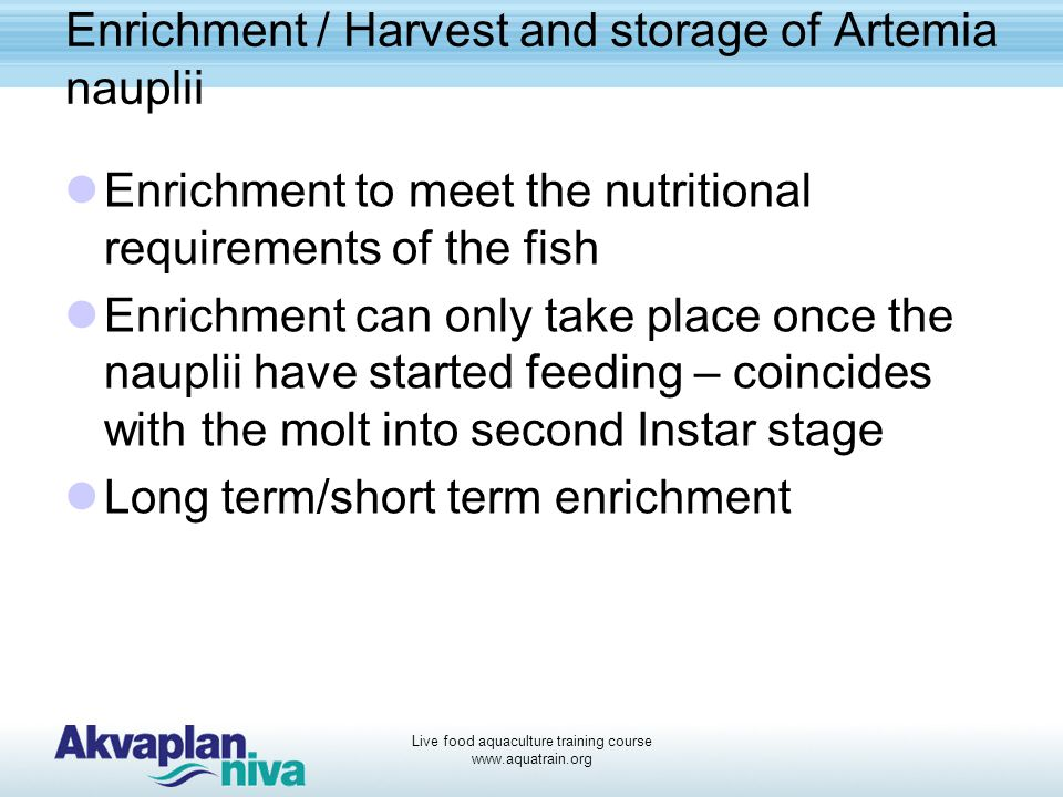 Enrichment / Harvest and storage of Artemia nauplii