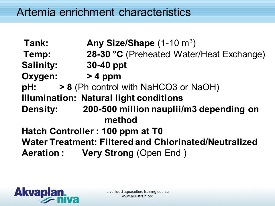 Artemia enrichment characteristics