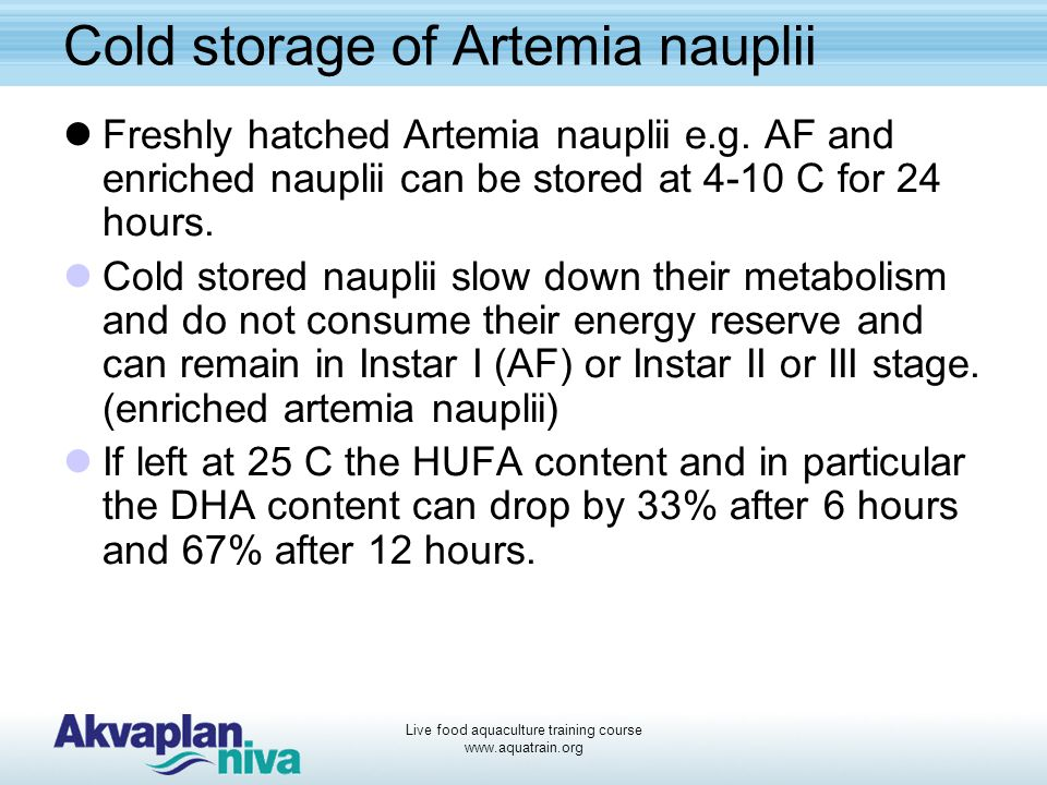 Cold storage of Artemia nauplii