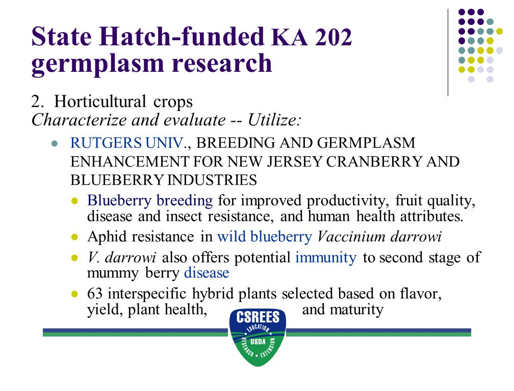 State Hatch-funded KA 202 germplasm research