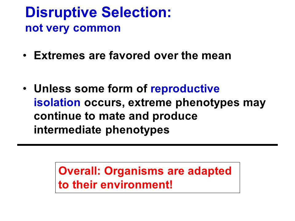 Disruptive Selection: not very common