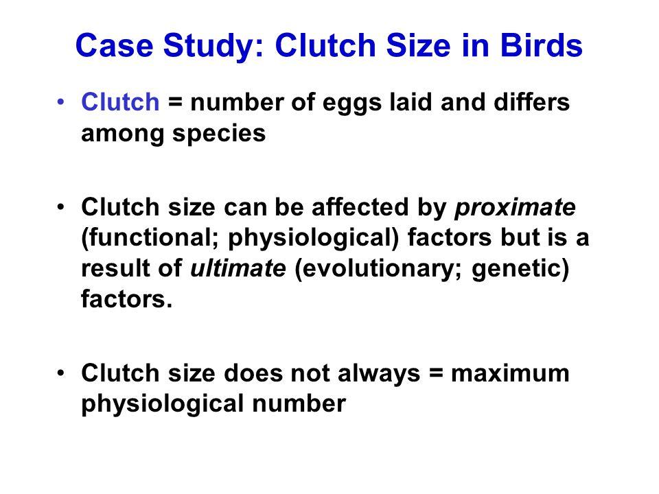 Case Study: Clutch Size in Birds