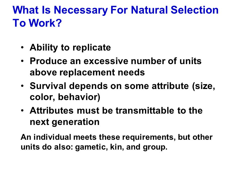 What Is Necessary For Natural Selection To Work