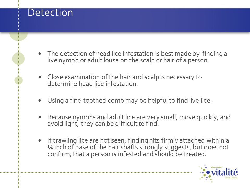 Detection The detection of head lice infestation is best made by finding a live nymph or adult louse on the scalp or hair of a person.