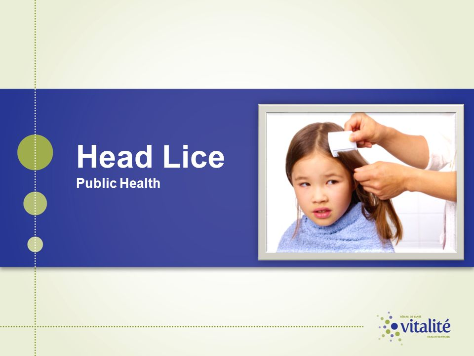 Head Lice Public Health