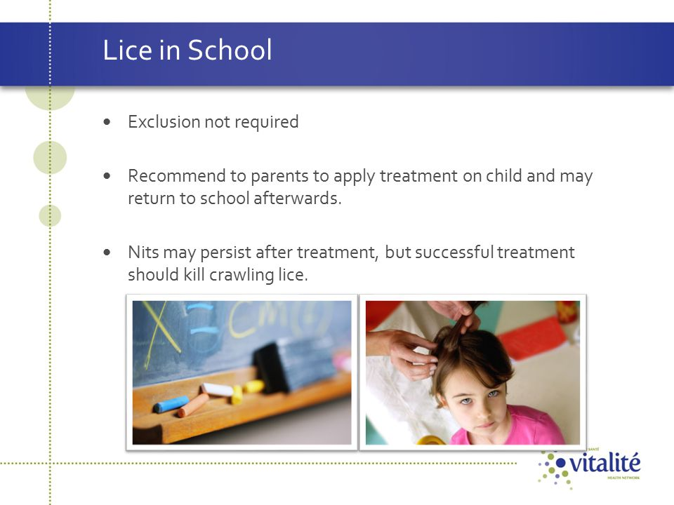 Lice in School Exclusion not required